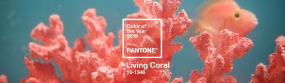 Living Coral, el color Pantone 2019